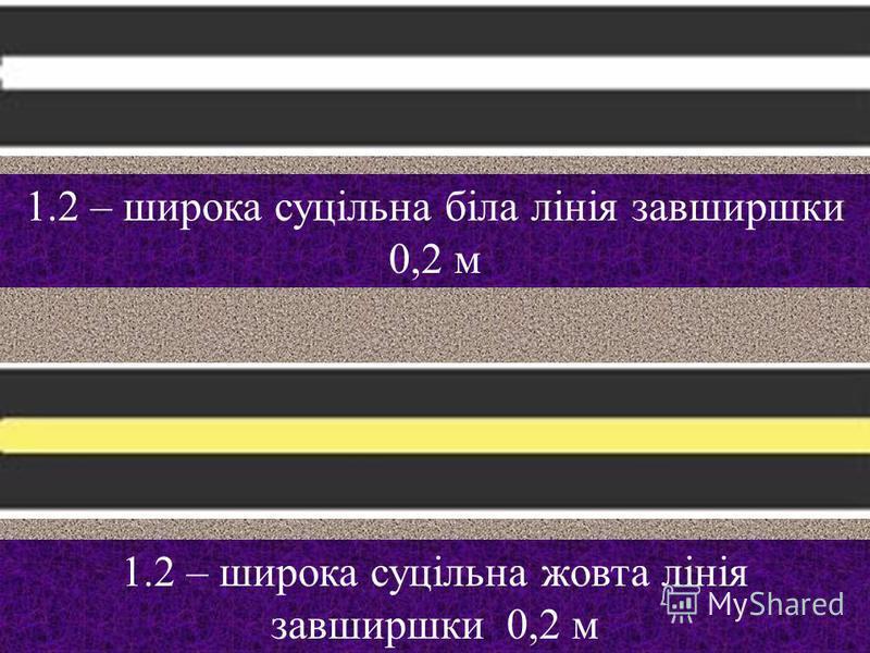 1.1 – позначає межі місць стоянки транспортних засобів ПЕРЕТИНАТИ ДОЗВОЛЯЄТЬСЯ