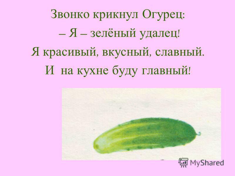 Звонко крикнул Огурец : – Я – зелёный удалец ! Я красивый, вкусный, славный. И на кухне буду главный !