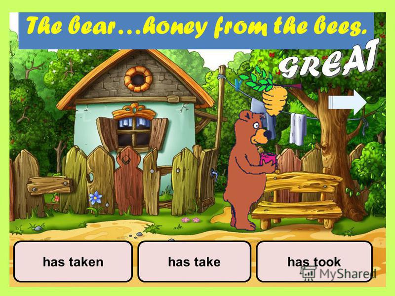 The bear…honey from the bees. has takehas takenhas took