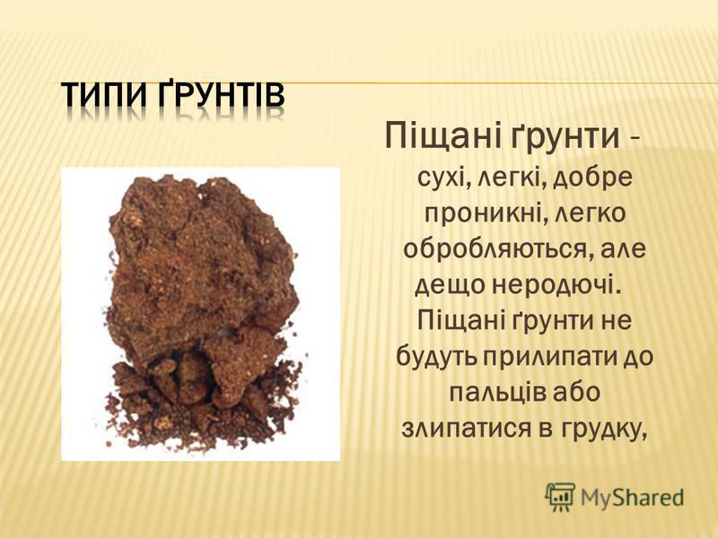 Піщані ґрунти - сухі, легкі, добре проникні, легко обробляються, але дещо неродючі.. Піщані ґрунти не будуть прилипати до пальців або злипатися в грудку,