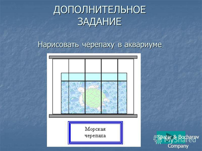 ДОПОЛНИТЕЛЬНОЕ ЗАДАНИЕ Нарисовать черепаху в аквариуме Spatar & Bocharov Company
