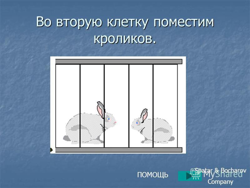 Во вторую клетку поместим кроликов. ПОМОЩЬ Spatar & Bocharov Company