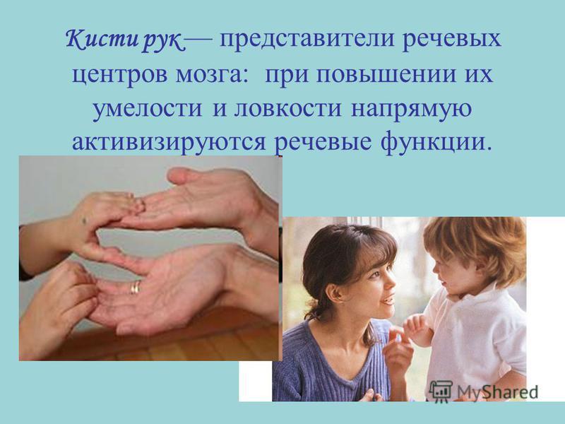 Кисти рук представители речевых центров мозга: при повышении их умелости и ловкости напрямую активизируются речевые функции.