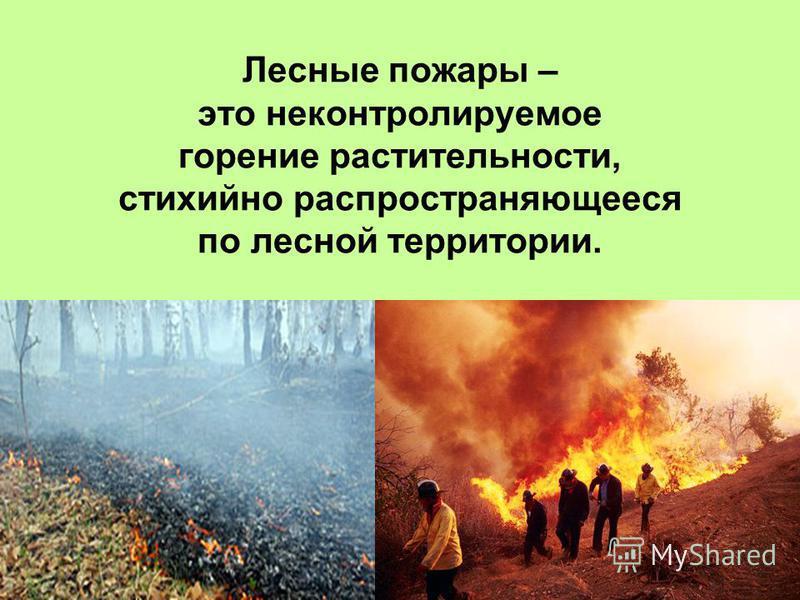 Лесные пожары – это неконтролируемое горение растительности, стихийно распространяющееся по лесной территории.