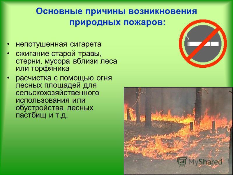 Основные причины возникновения природных пожаров: непотушенная сигарета сжигание старой травы, стерни, мусора вблизи леса или торфяника расчистка с помощью огня лесных площадей для сельскохозяйственного использования или обустройства лесных пастбищ и