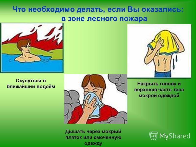 Что необходимо делать, если Вы оказались: в зоне лесного пожара Окунуться в ближайший водоём Накрыть голову и верхнюю часть тела мокрой одеждой Дышать через мокрый платок или смоченную одежду