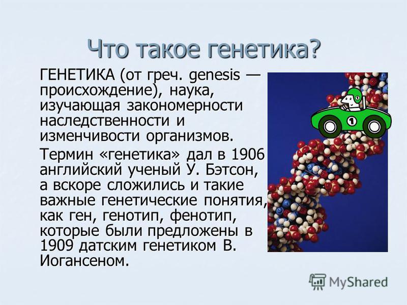 Что такое генетика? ГЕНЕТИКА (от греч. genesis происхождение), наука, изучающая закономерности наследственности и изменчивости организмов. Термин «генетика» дал в 1906 английский ученый У. Бэтсон, а вскоре сложились и такие важные генетические поняти