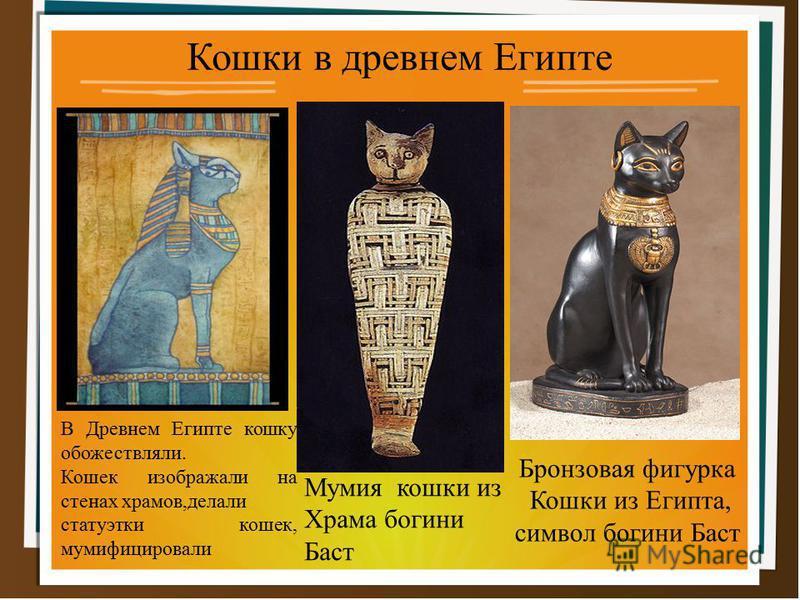 Кошки в древнем Египте Бронзовая фигурка Кошки из Египта, символ богини Баст Мумия кошки из Храма богини Баст В Древнем Египте кошку обожествляли. Кошек изображали на стенах храмов,делали статуэтки кошек, мумифицировали