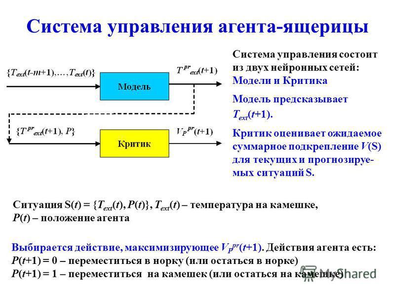 Система управления агента-ящерицы Система управления состоит из двух нейронных сетей: Модели и Критика Модель предсказывает T ext (t+1). Критик оценивает ожидаемое суммарное подкрепление V(S) для текущих и прогнозируе- мых ситуаций S. Выбирается дейс