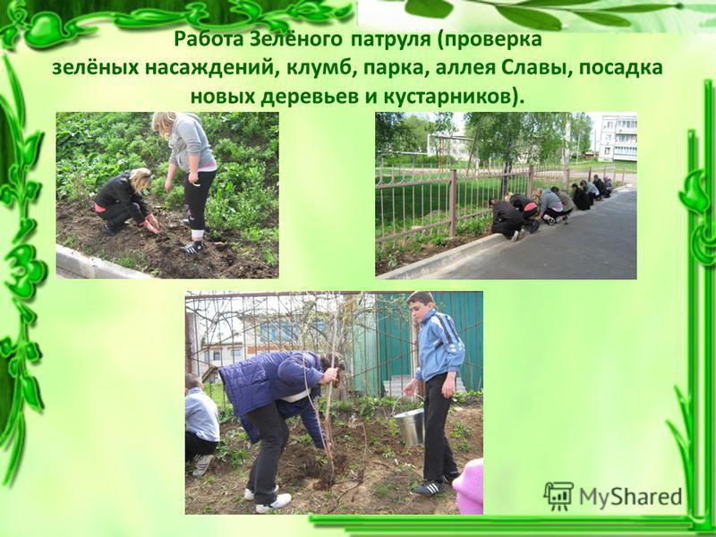 Работа Зелёного патруля (проверка зелёных насаждений, клумб, парка, аллея Славы, посадка новых деревьев и кустарников).