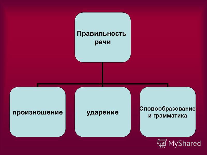 Правильность речи произношение ударение Словообразование и грамматика