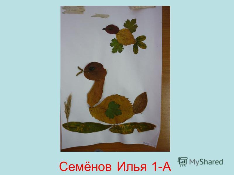 Семёнов Илья 1-А