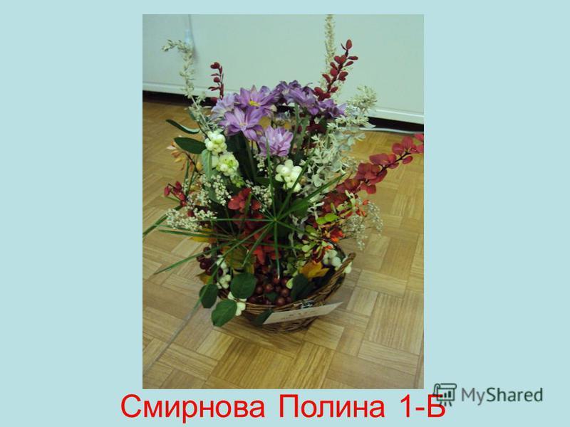 Смирнова Полина 1-Б