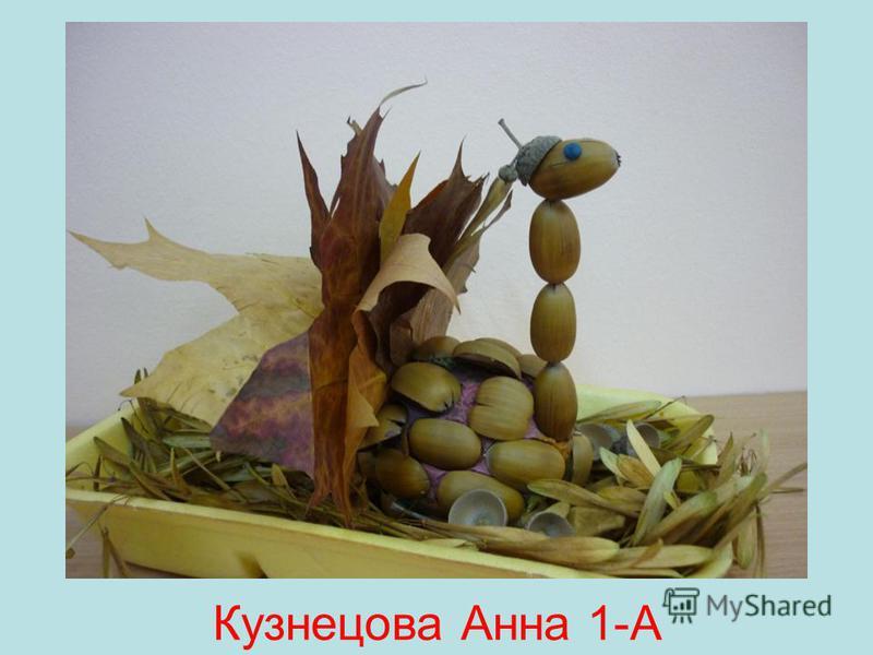 Кузнецова Анна 1-А