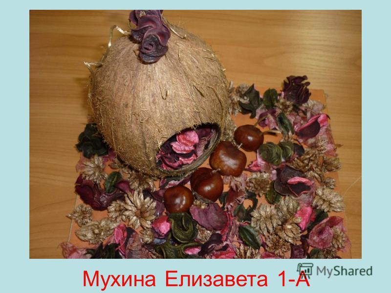 Мухина Елизавета 1-А