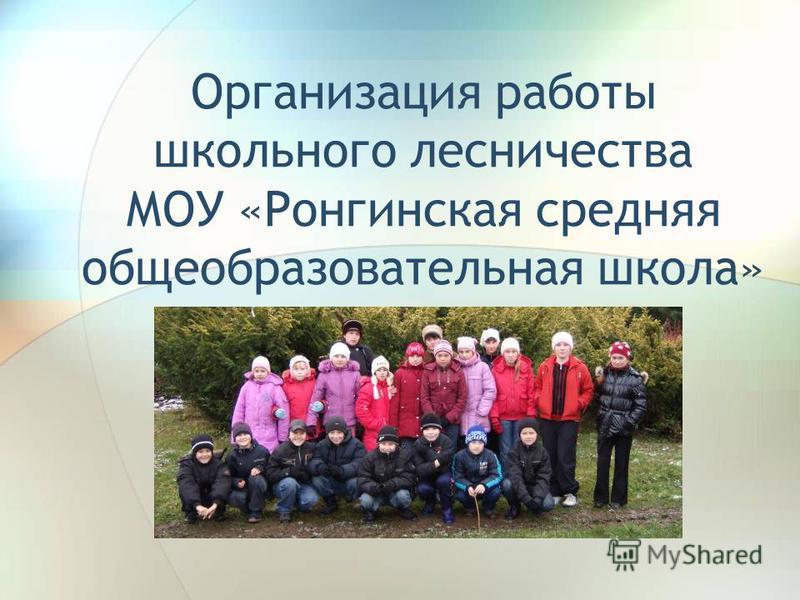 Организация работы школьного лесничества МОУ «Ронгинская средняя общеобразовательная школа»