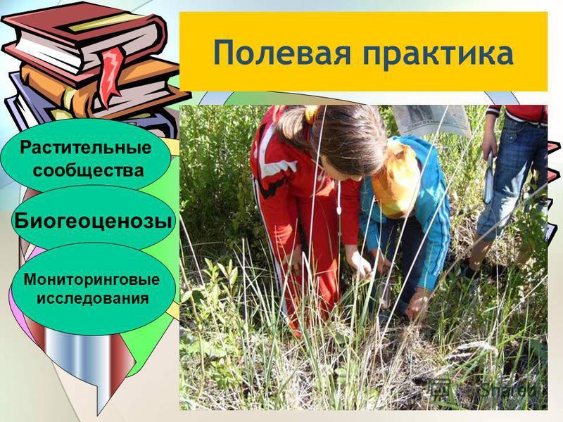 Полевая практика Растительные сообщества Биогеоценозы Мониторинговые исследования