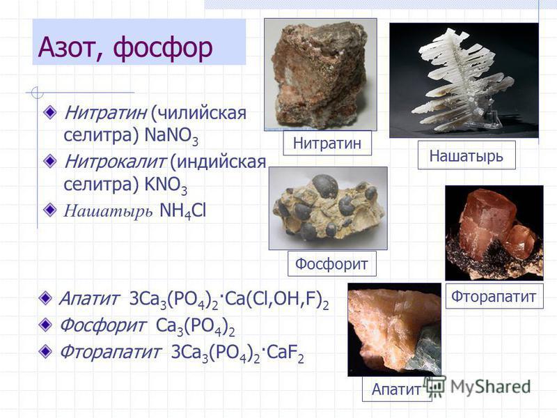Нитратин (чилийская селитра) NaNO 3 Нитрокалит (индийская селитра) KNO 3 Нашатырь NH 4 Cl Нашатырь Нитратин Апатит 3Ca 3 (PO 4 ) 2 ·Ca(Cl,OH,F) 2 Фосфорит Ca 3 (PO 4 ) 2 Фторапатит 3Ca 3 (PO 4 ) 2 ·CaF 2 Апатит Фосфорит Фторапатит Азот, фосфор