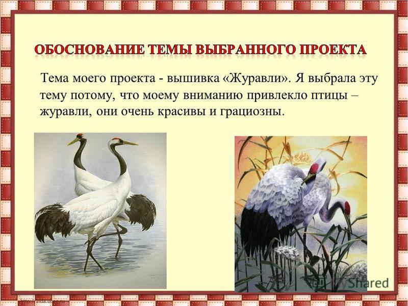 Тема моего проекта - вышивка «Журавли». Я выбрала эту тему потому, что моему вниманию привлекло птицы – журавли, они очень красивы и грациозны.