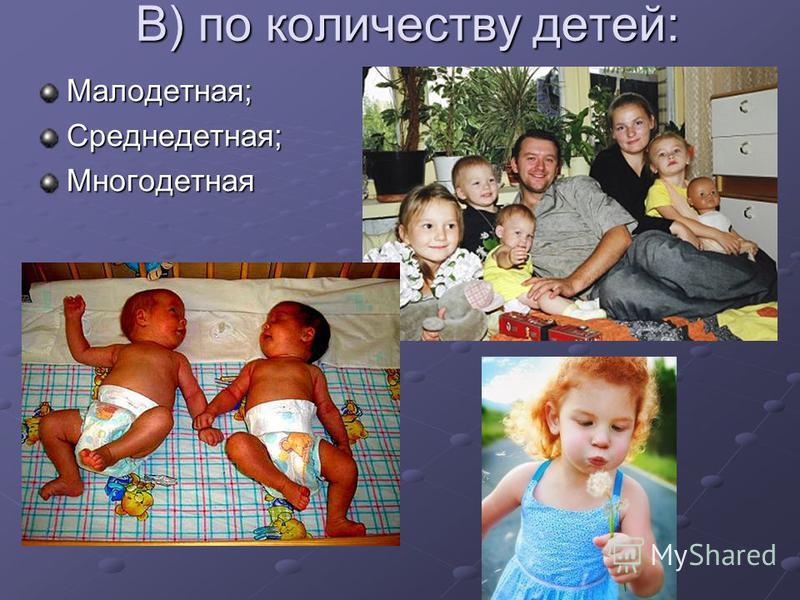 В) по количеству детей: Малодетная;Среднедетная;Многодетная