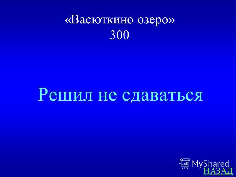 «Васюткино озеро» 300 ответ Что сделал Васютка когда заблудился?