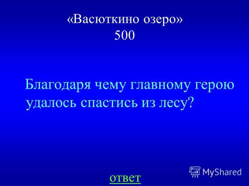 НАЗАД У речки «Васюткино озеро» 400