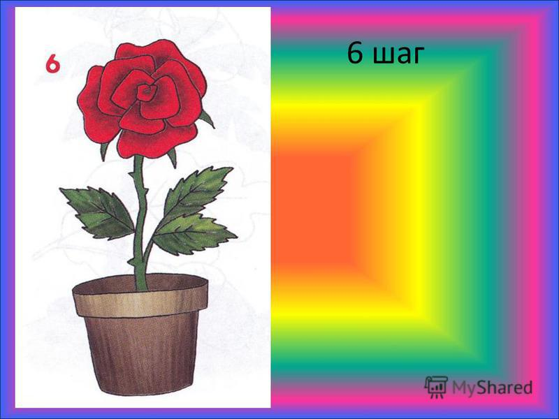 6 шаг