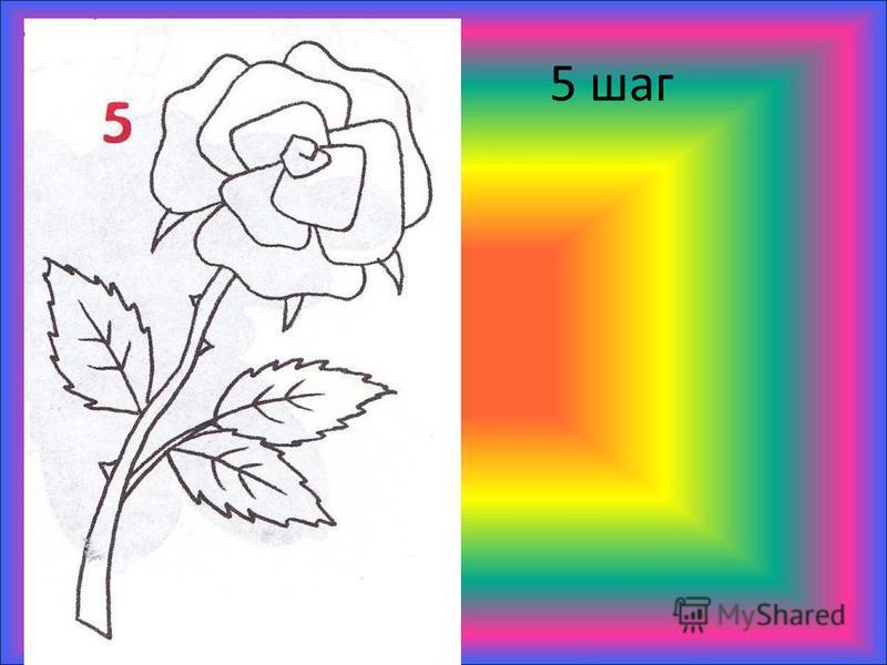 5 шаг