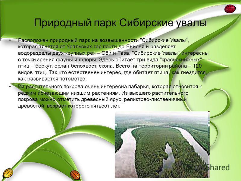 Природный парк Сибирские увалы Расположен природный парк на возвышенности