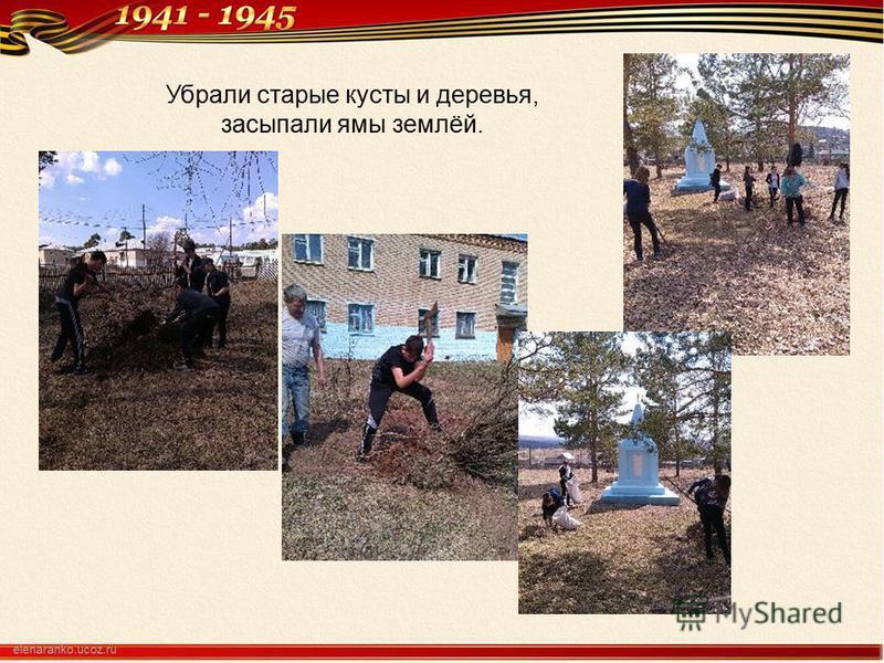 Убрали старые кусты и деревья, засыпали ямы землёй.