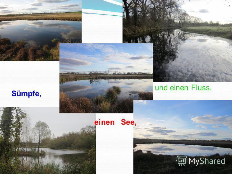 Sümpfe, und einen Fluss. einen See,
