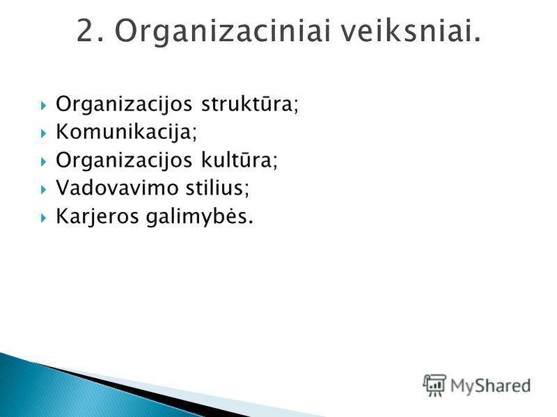 Organizacijos struktūra; Komunikacija; Organizacijos kultūra; Vadovavimo stilius; Karjeros galimybės.