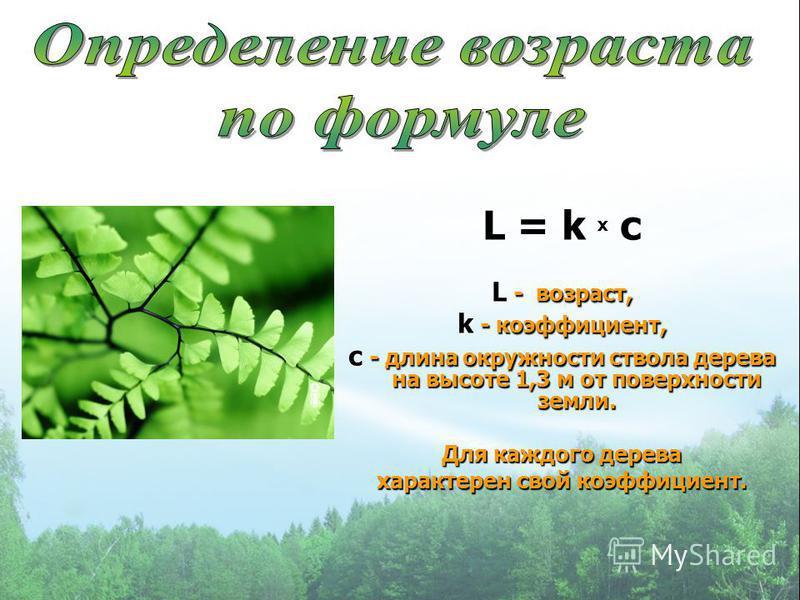 L = k х c L - возраст, k - коэффициент, c - длина окружности ствола дерева на высоте 1,3 м от поверхности земли. Для каждого дерева характерен свой коэффициент.