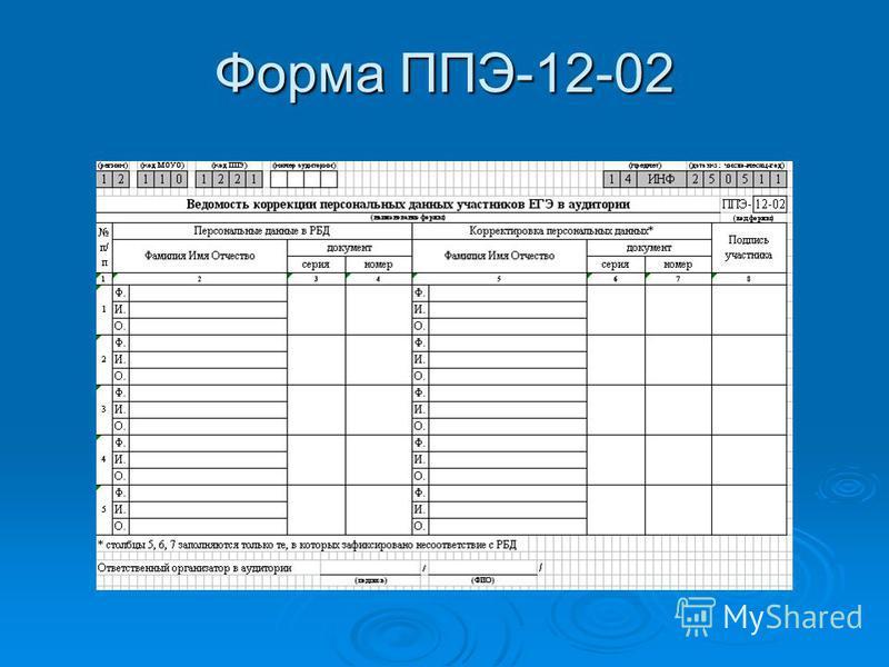 Форма ППЭ-12-02