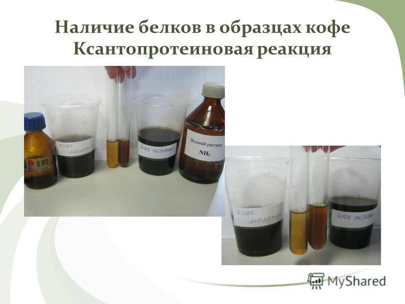 Наличие белков в образцах кофе Ксантопротеиновая реакция