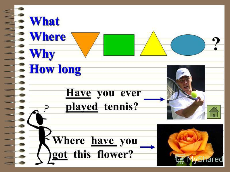 Where What Why How long ? Where have you got this flower? Have you ever played tennis?