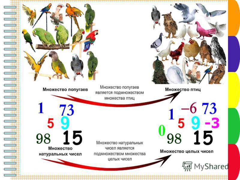 Разновидности объектов и их классификация Из двух множеств, связанных отношением «является разновидностью», одно является подмножеством другого.