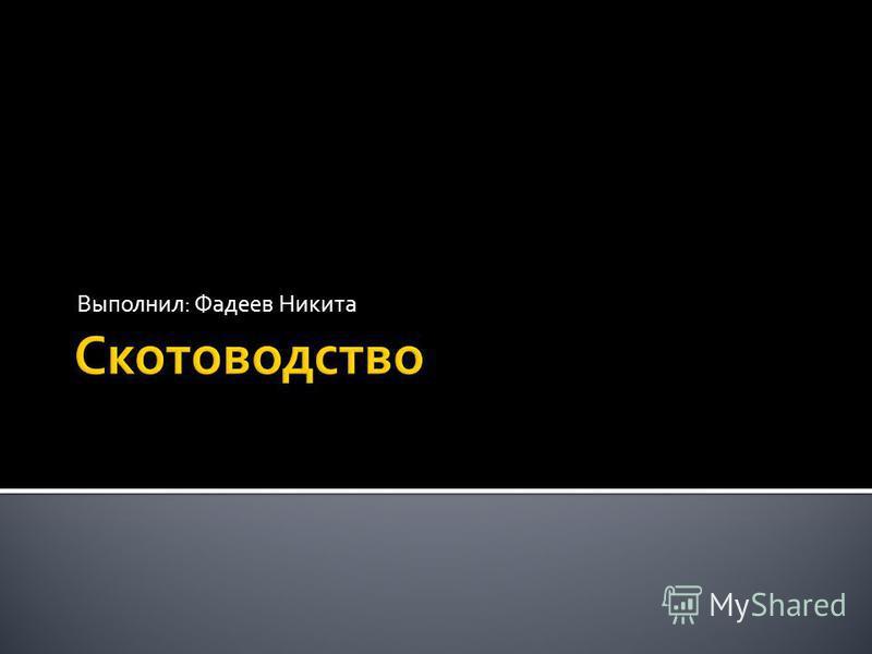 Выполнил: Фадеев Никита