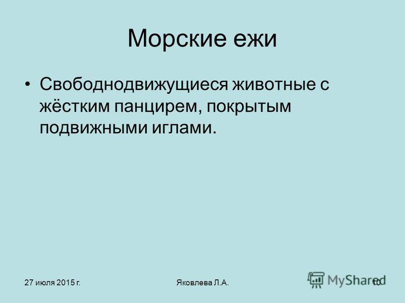 27 июля 2015 г.Яковлева Л.А.10 Морские ежи Свободнодвижущиеся животные с жёстким панцирем, покрытым подвижными иглами.