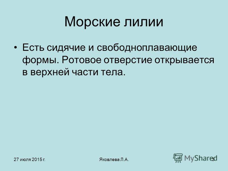 27 июля 2015 г.Яковлева Л.А.3 Морские лилии Есть сидячие и свободноплавающие формы. Ротовое отверстие открывается в верхней части тела.