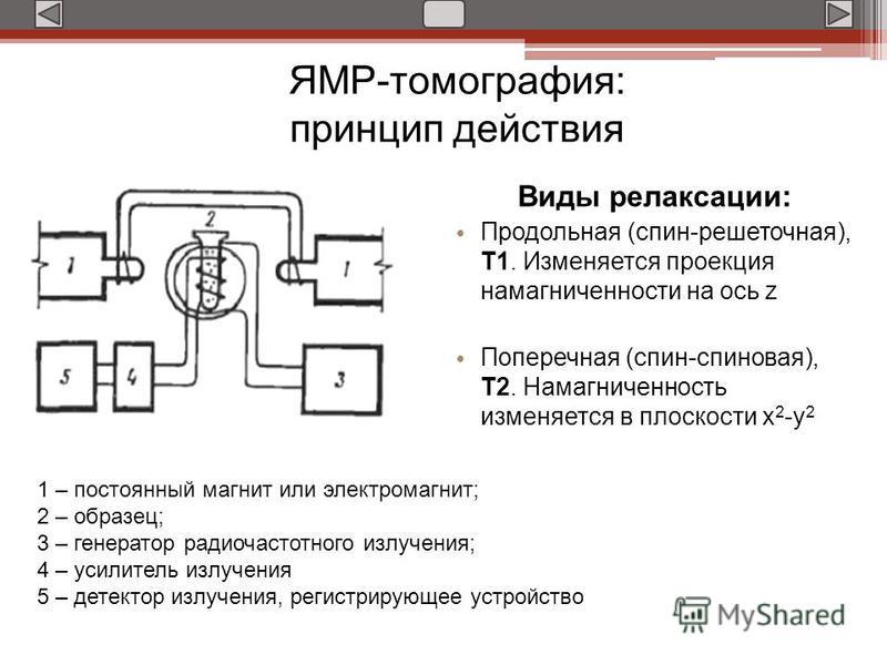 Виды релаксации: Продольная (спин-решеточная), Т1. Изменяется проекция намагниченности на ось z Поперечная (спин-спиновая), Т2. Намагниченность изменяется в плоскости х 2 -у 2 1 – постоянный магнит или электромагнит; 2 – образец; 3 – генератор радиоч