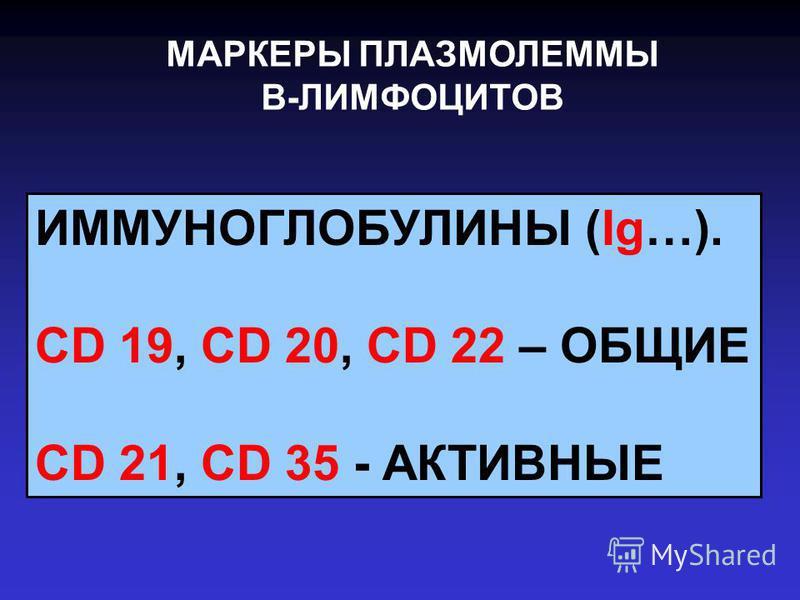 МАРКЕРЫ ПЛАЗМОЛЕММЫ В-ЛИМФОЦИТОВ ИММУНОГЛОБУЛИНЫ (Ig…). CD 19, CD 20, CD 22 – ОБЩИЕ CD 21, CD 35 - АКТИВНЫЕ