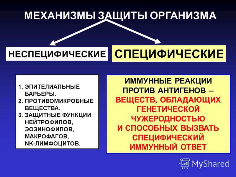 МЕХАНИЗМЫ ЗАЩИТЫ ОРГАНИЗМА 1. ЭПИТЕЛИАЛЬНЫЕ БАРЬЕРЫ. 2. ПРОТИВОМИКРОБНЫЕ ВЕЩЕСТВА. 3. ЗАЩИТНЫЕ ФУНКЦИИ НЕЙТРОФИЛОВ, ЭОЗИНОФИЛОВ, МАКРОФАГОВ, NK-ЛИМФОЦИТОВ. НЕСПЕЦИФИЧЕСКИЕ СПЕЦИФИЧЕСКИЕ ИММУННЫЕ РЕАКЦИИ ПРОТИВ АНТИГЕНОВ – ВЕЩЕСТВ, ОБЛАДАЮЩИХ ГЕНЕТИЧЕ
