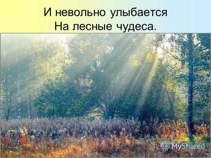 И невольно улыбается На лесные чудеса.