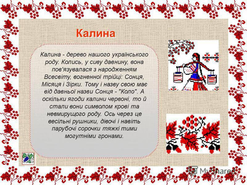 Калина - дерево нашого українського роду. Колись, у сиву давнину, вона пов'язувалася з народженням Всесвіту, вогненної трійці: Сонця, Місяця і Зірки. Тому і назву свою має від давньої назви Сонця -