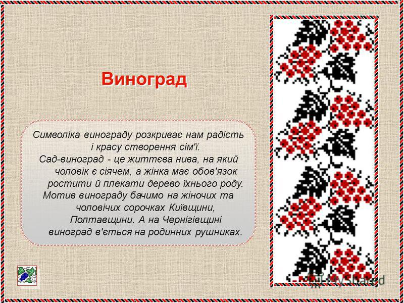 Символіка винограду розкриває нам радість і красу створення сім'ї. Сад-виноград - це життєва нива, на який чоловік є сіячем, а жінка має обов'язок ростити й плекати дерево їхнього роду. Мотив винограду бачимо на жіночих та чоловічих сорочках Київщини