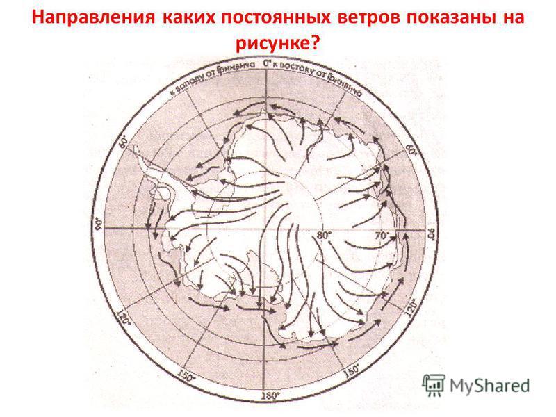 Направления каких постоянных ветров показаны на рисунке?