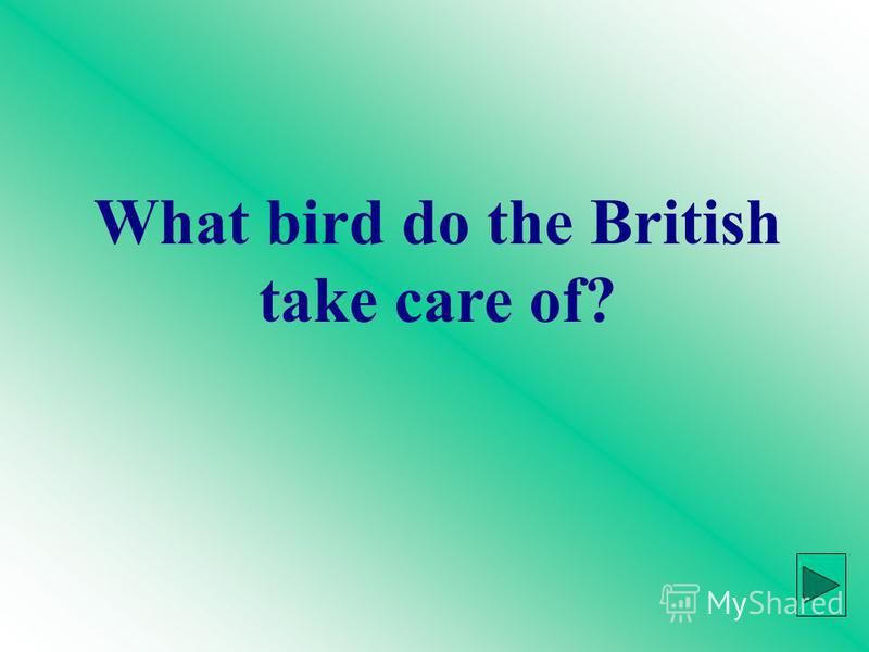 What bird do the British take care of?
