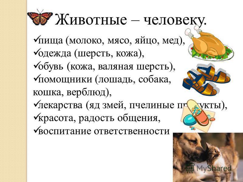 Животные – человеку. пища (молоко, мясо, яйцо, мед), одежда (шерсть, кожа), обувь (кожа, валяная шерсть), помощники (лошадь, собака, кошка, верблюд), лекарства (яд змей, пчелиные продукты), красота, радость общения, воспитание ответственности