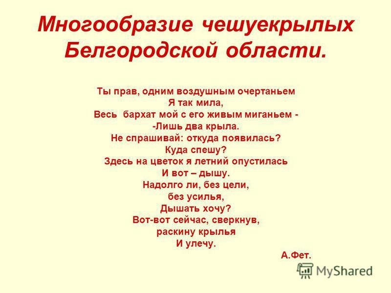 Многообразие чешуекрылых Белгородской области. Ты прав, одним воздушным очертаньем Я так мила, Весь бархат мой с его живым миганьем - -Лишь два крыла. Не спрашивай: откуда появилась? Куда спешу? Здесь на цветок я летний опустилась И вот – дышу. Надол